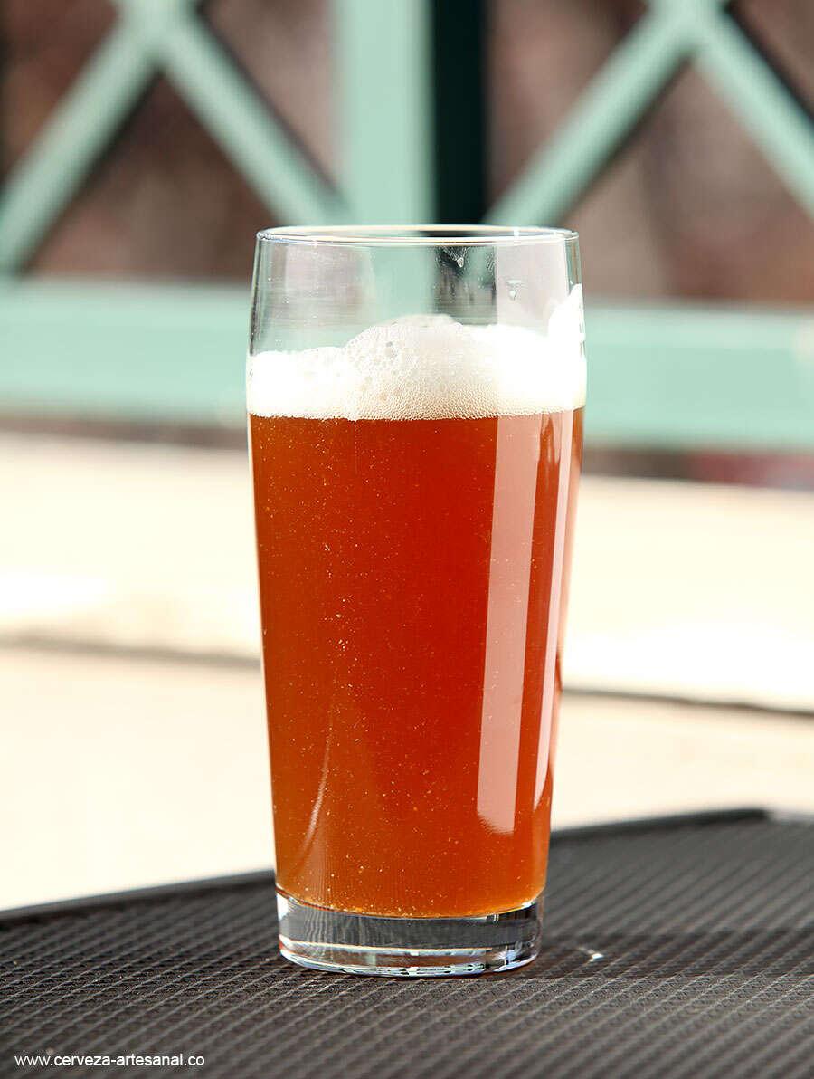 cerveza-artesanal-pale-ale-de-centeno