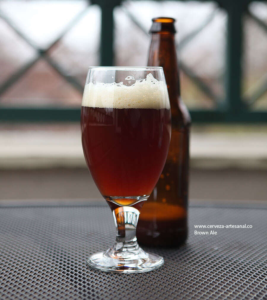 Brown Ale – 60 minutos – con lúpulo Warrior