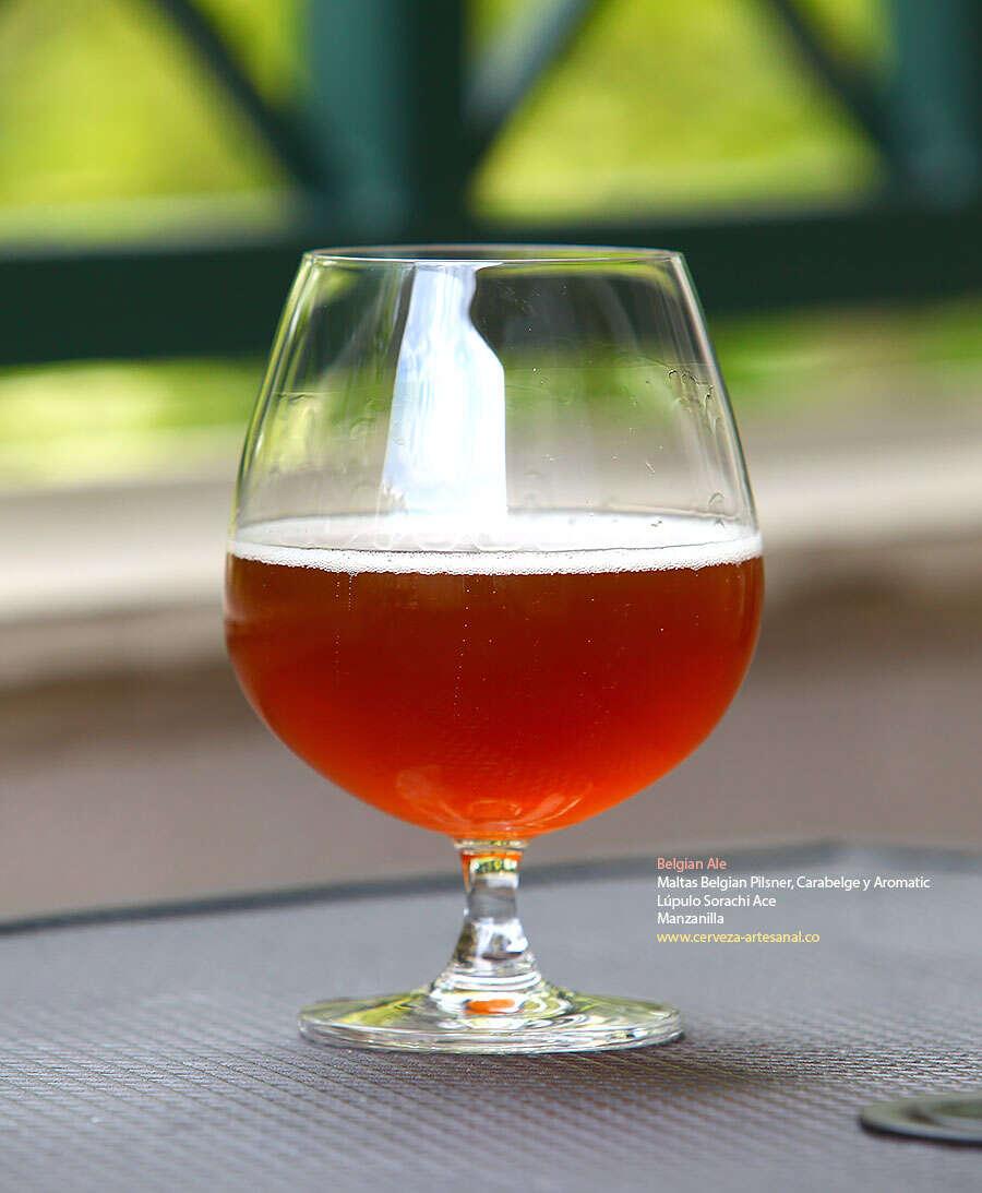 Belgian Ale con maltas Belgian Pilsner, Carabelge y Aromatic; lúpulo Sorachi ace y adición de manzanilla