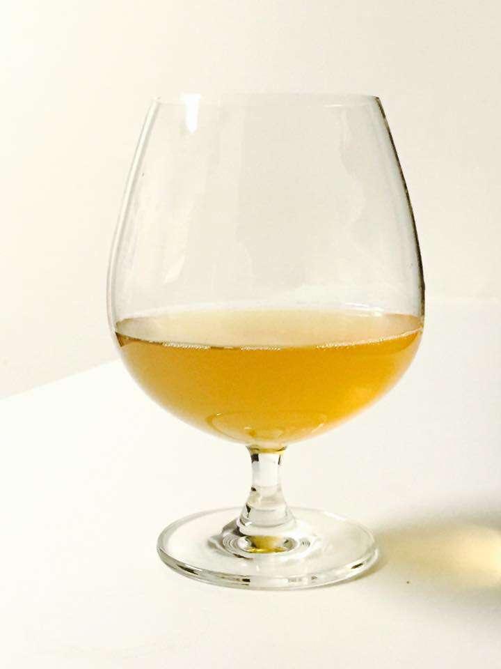 cerveza-de-mango-antes-de-embotellar