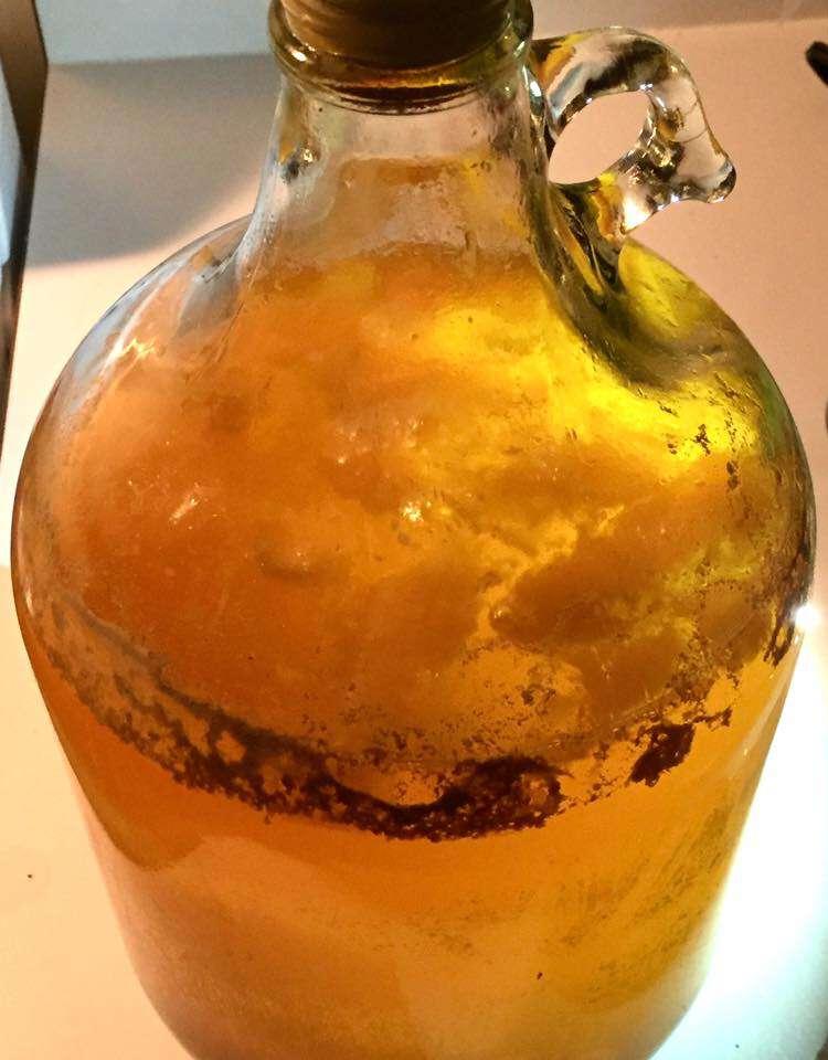mango-en-fermentador-cerveza-ipa